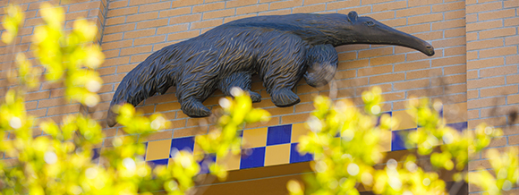 UCI International Admissions Virtual Advising